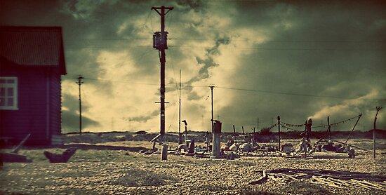 Ness by Nicola Smith