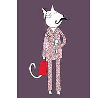 The Cat's Pajamas Photographic Print