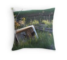 Treasures of the Country Road Throw Pillow