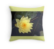 The time paper lotus Throw Pillow