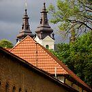 View on church from former east gates. L'viv, Ukraine by Anastasiya Smirnova