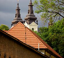 View on church from former east gates. L'viv, Ukraine by Anastasiya Smirnova