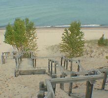 Sand or Sandy Stairs? by Karen K Smith
