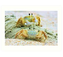 Ghost Crabs Art Print