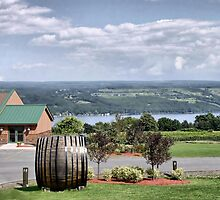 Glenora Wine Cellars by Monnie Ryan