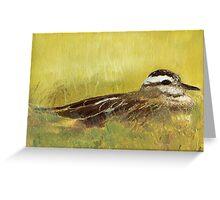 Sitting Bird Greeting Card