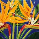 Birds of Paradise by marlene veronique holdsworth