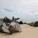 Beach View - Moreton Island by Bami