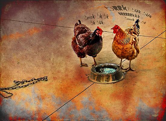 fowl language around the dog's bowl by carol brandt