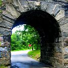 Stone Bridge No. 3 by Debbie Robbins