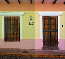 door_window by seemorepr