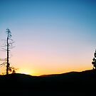 Sunset Silhouette by NancyC