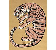Asian Style Tiger No. 2 Photographic Print