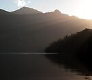 Sunrays over Doubtful Sound  by Odille Esmonde-Morgan