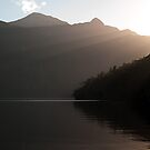 Sunrays over Doubtful Sound  by Odille Esmonde-Morgan