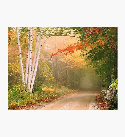 Cilly Hill Road Photographic Print