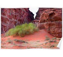 Wadi Rum Desert in Jordan - green and red Poster