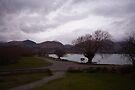 Lake Wakatipu foreshore at Kinloch, NZ by Odille Esmonde-Morgan