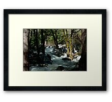 After the Fall Framed Print