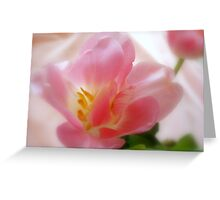 Pink Satin Greeting Card