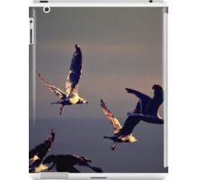 Fly iPad Case/Skin