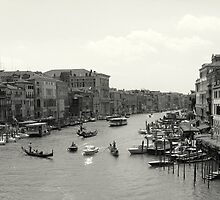 Venice  by leigh miller