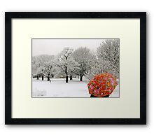 The lady with the red umbrella Framed Print