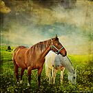 If Horses Could Dream... by Laura Palazzolo