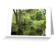 Cool Reflections......Krambach,  Australia. Greeting Card