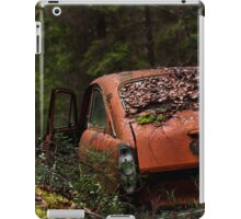 Hide and Seek I iPad Case/Skin