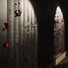 Roll of Honour by Adam Spence