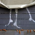Paris - Dancing legs on the fence. by Jean-Luc Rollier