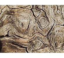 Wood Face Photographic Print
