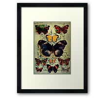 Postcard Butterflies Framed Print