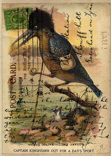 Postcard Kingfisher by Sarah Vernon