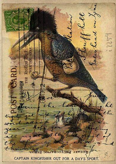 Postcard Kingfisher by Sarah Vernon