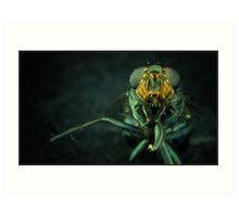 Hi, I am an Insect Art Print