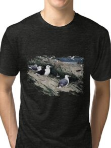 Painting of herring gulls and a Great Black-backed Gull Tri-blend T-Shirt