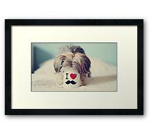 Funny Dog Framed Print
