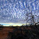 Cloudy Sunrise  by helmutk