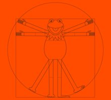 Vitruvian Frog Kids Clothes