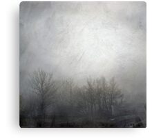 Mist in the trees Canvas Print