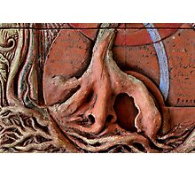 Sense Door - Root (detail of Lotus VII) Photographic Print