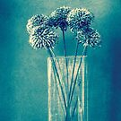 Monochrome flowers and vase by Anne Staub