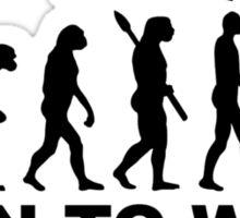 Evolution Wakeboard Sticker