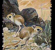 painting of The Lesser Egyptian Jerboa by marmur