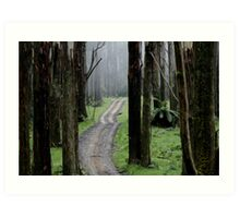 Bicentennial National Trail - Healesville end (Victoria) Art Print