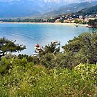 GOLDEN BEACH.THASSOS.GREECE. by ronsaunders47