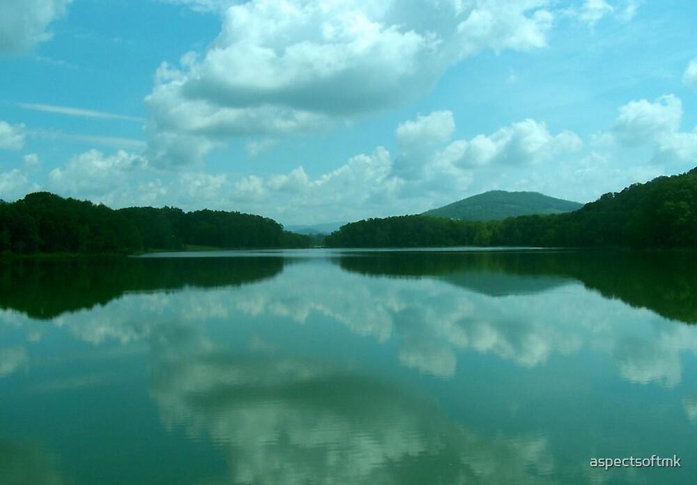 reflecting... by aspectsoftmk