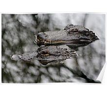 Gator Mates Poster